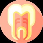 097 tooth 1 | Uplus Dental